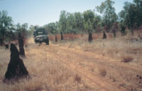 2926-NTTC-Bullita-access-track-Gregory-National-park
