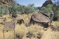 Viewing Petroglyphs at NDhala Gorge Nature Park